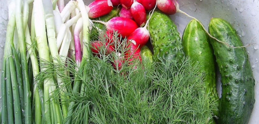 Ранні овочі: як споживати без шкоди для здоров'я