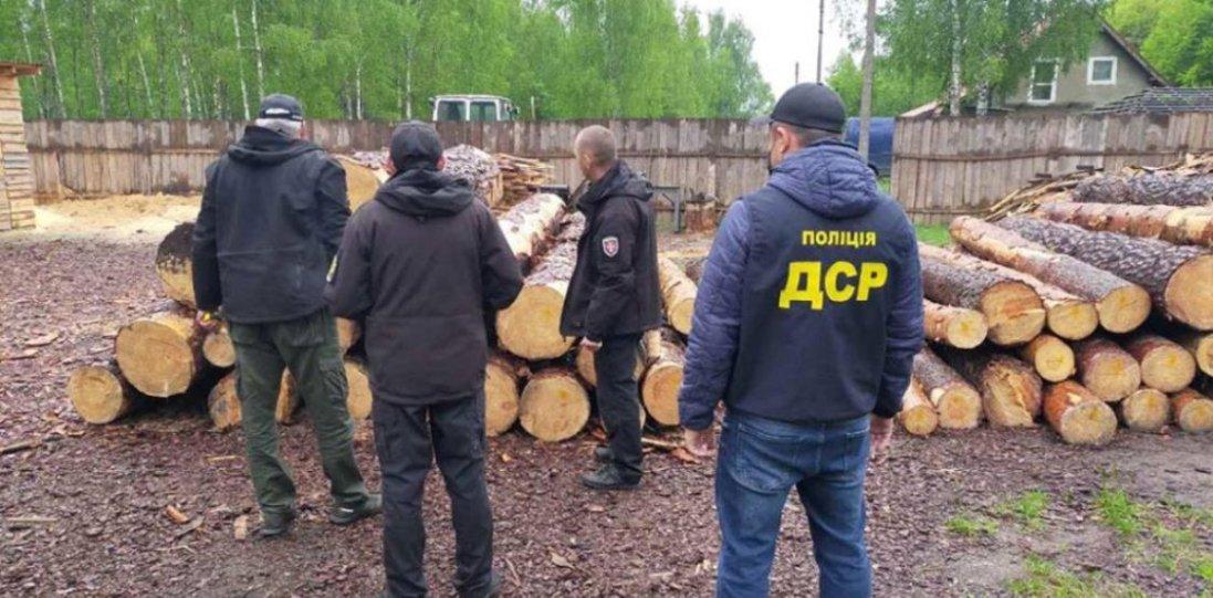 Ножі, пістолети, кастети: на Волині в лісокрадів вилучили зброю й незаконну деревину