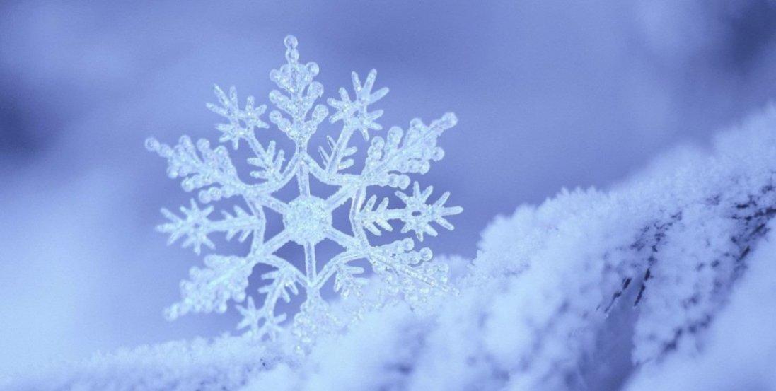 У Карпатах випало до 15 см снігу