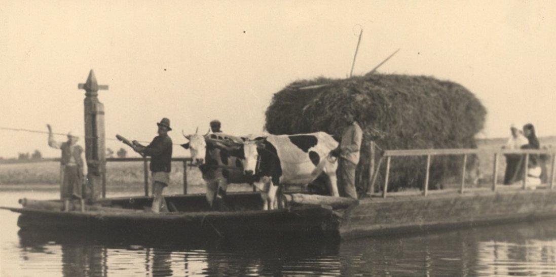 Волинські пейзажі на фото столітньої давнини