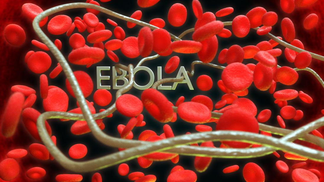 Нова загроза: де зафіксували спалах лихоманки Ебола