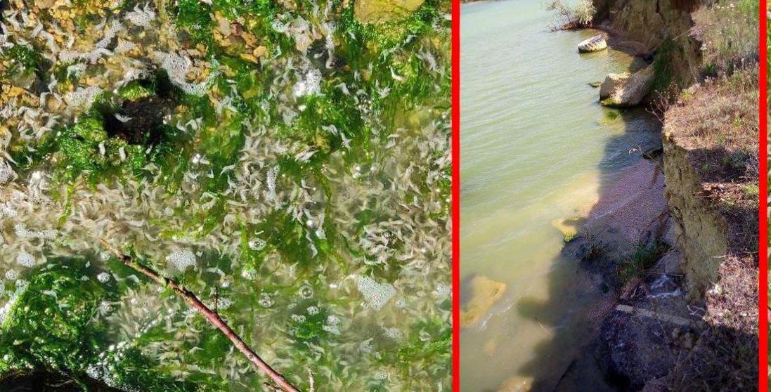 В Одесі вода змінила колір і стала смердіти