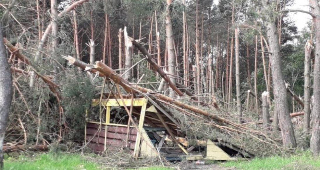 Зірвані дахи і повалені дерева: Волинню пронісся буревій