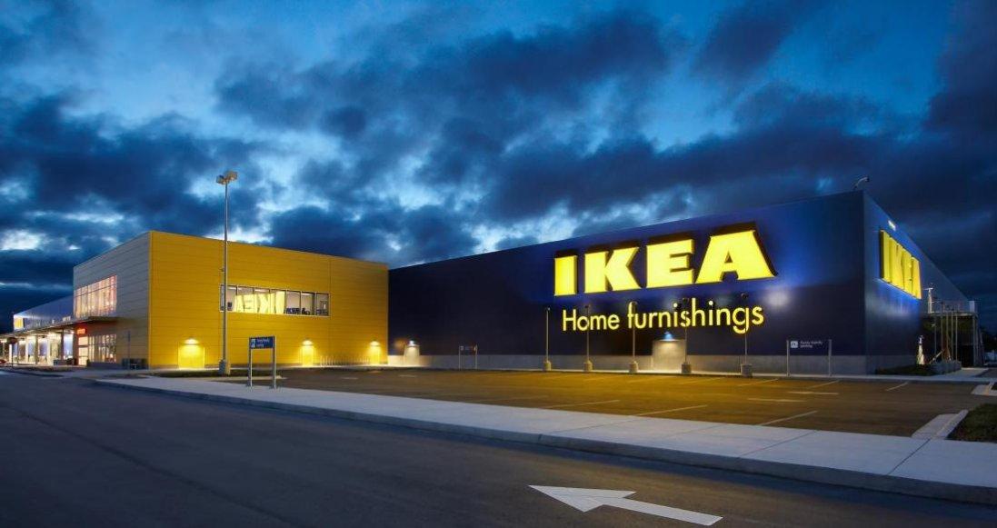 Вирубка українського лісу: в IKEA відповіли на звинувачення