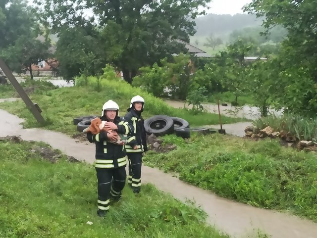Місцевим жителям допомогли евакуювати тварин/ Фото ДСНС