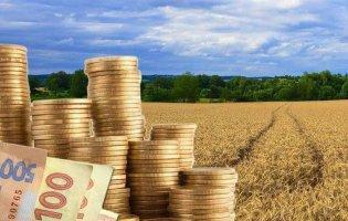 «Слуги народу» вигадали новий податок для селян — 6 тисяч за пай