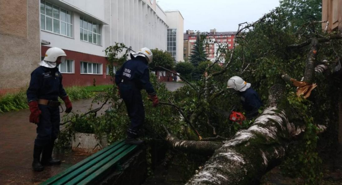 Вода у кафе та повалене дерево: у Франківську - потужна негода