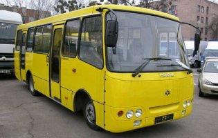 У Миколаєві пасажир побив водія маршрутки