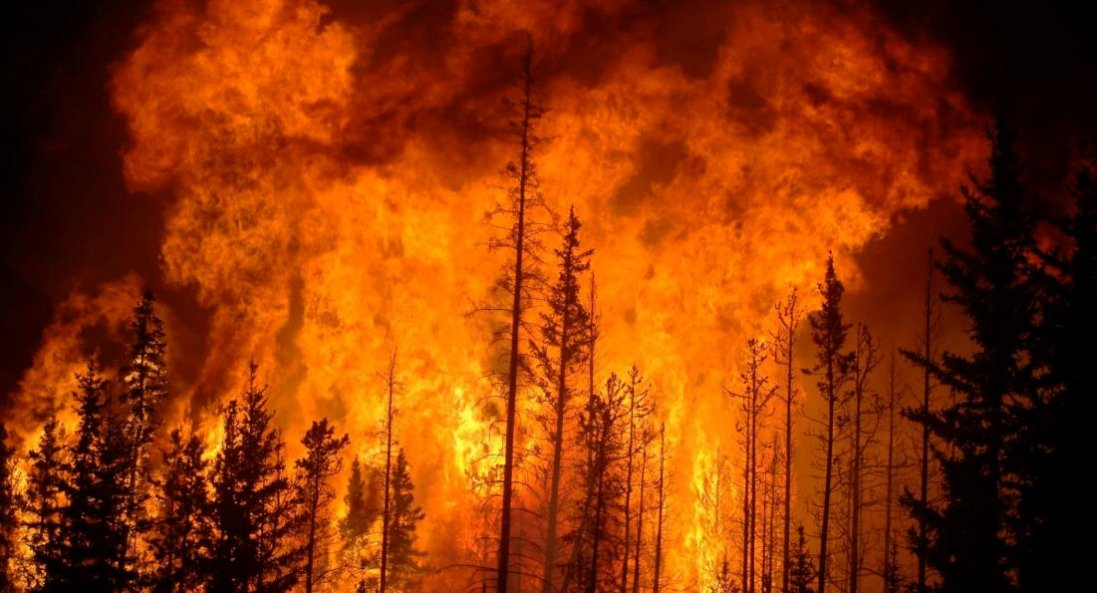 Пожежа на Луганщині: через пориви вітру ускладнилась ситуація