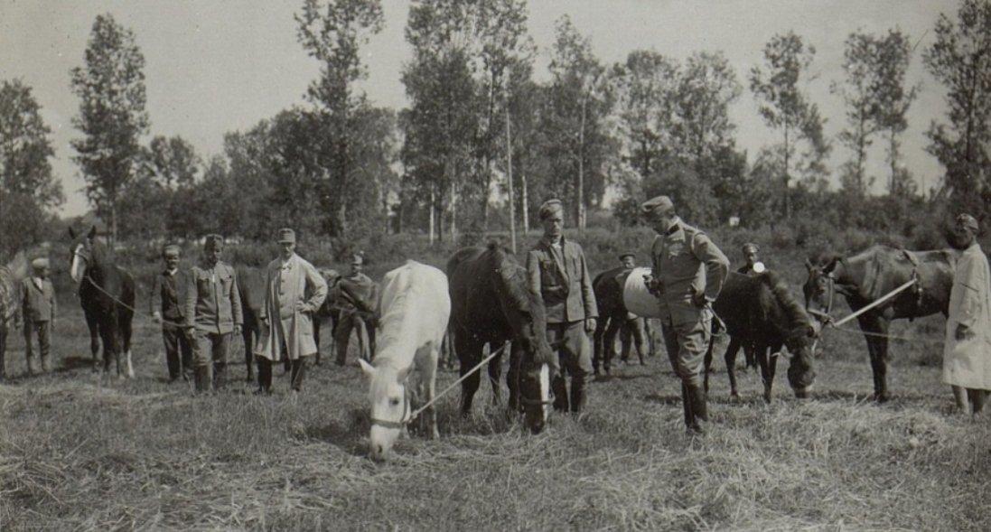 Австрійці в Ковелі 100 років тому на фото