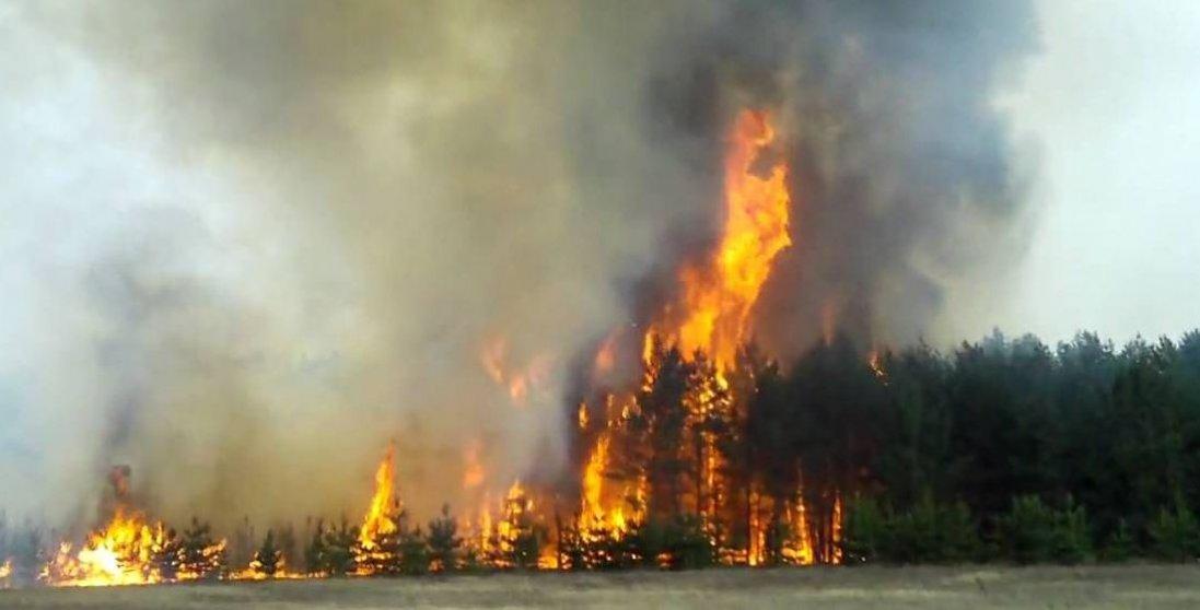 Через пожежу на Луганщині відкрито 10 кримінальних справ