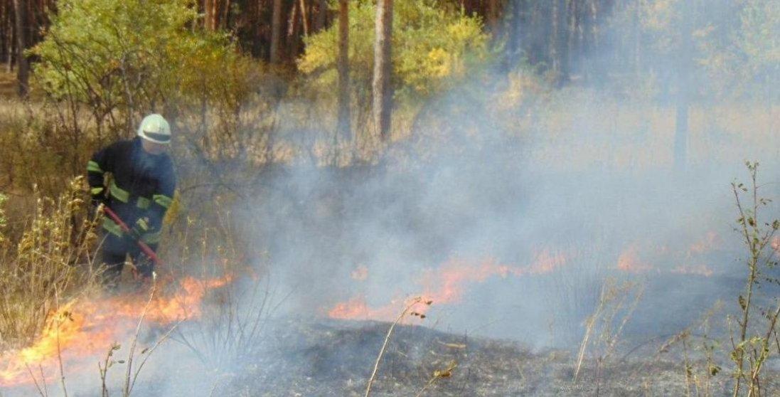 На Луганщині вогонь знищив більше 500 будинків