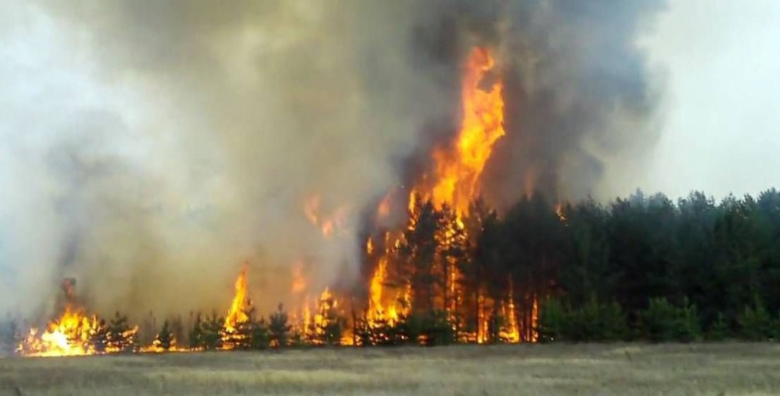 На Луганщині і досі гасять пожежі: вітер не вщухає