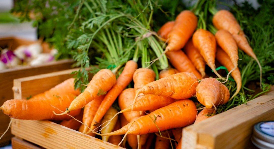 Морква: коли вибирати, де зберігати і як вберегти від хвороб
