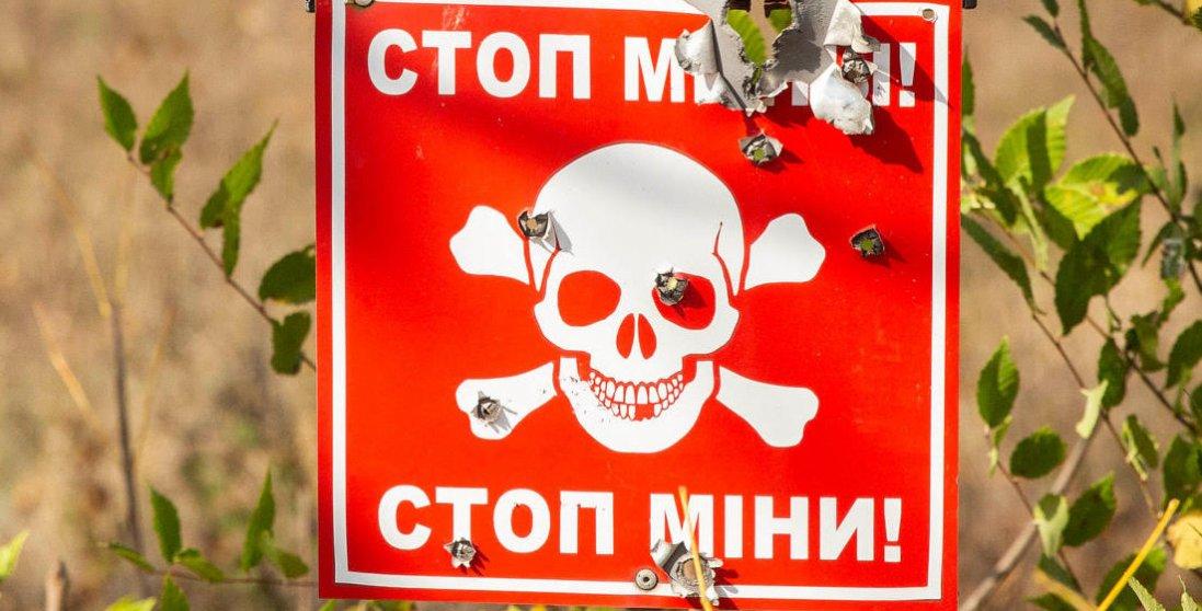 На Луганщині мати з сином підірвалися на вибуховому пристрої