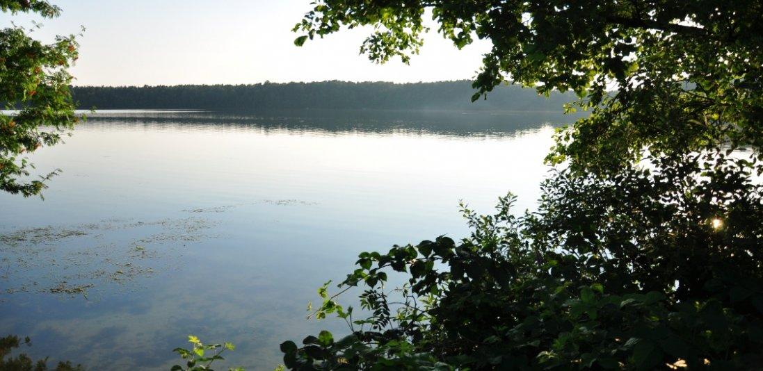 Які водойми на Волині дозволять орендувати задля  розведення риби