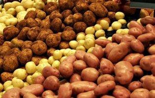 В Україні впала ціна на картоплю