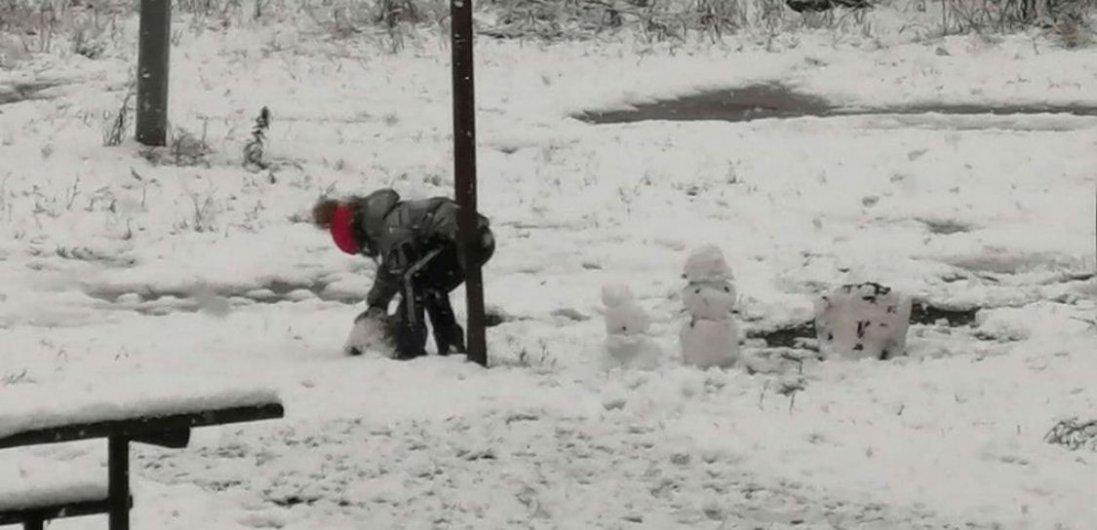 В Україні випав перший сніг. Де саме