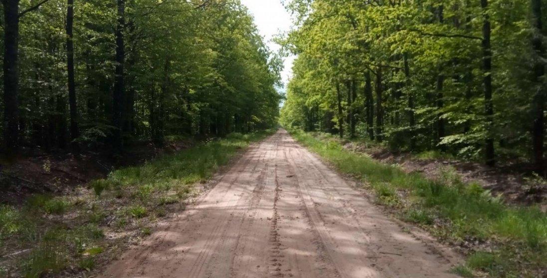У Луцьку відбудеться Файна гутірка: «Волинське болото врятує світ?»