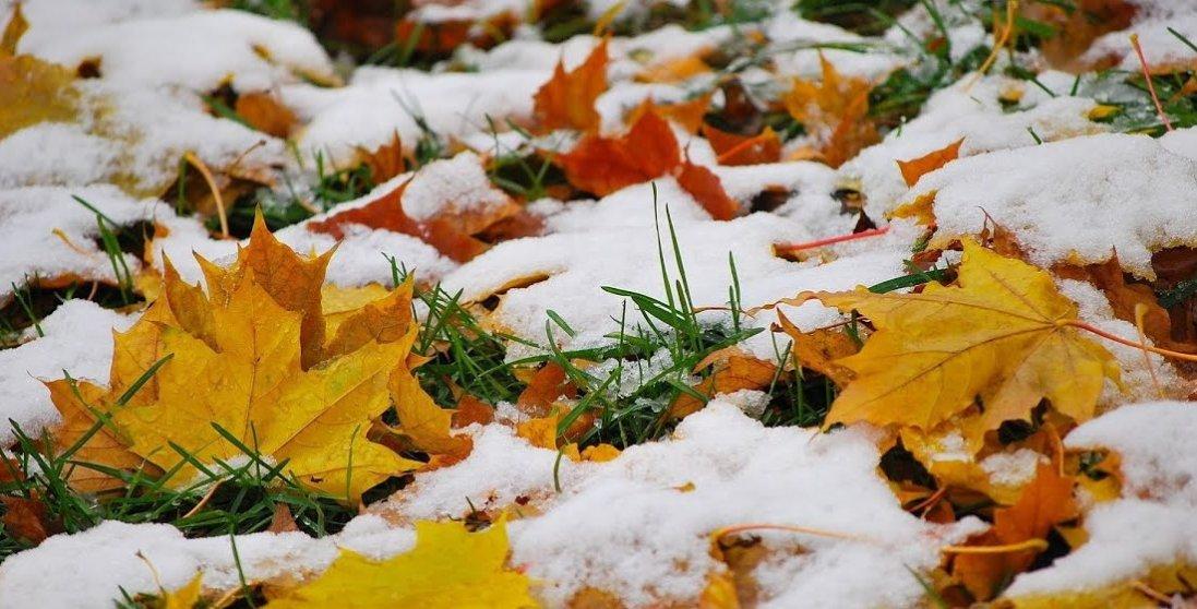 Снігу до 3 см: в Україні похолодало