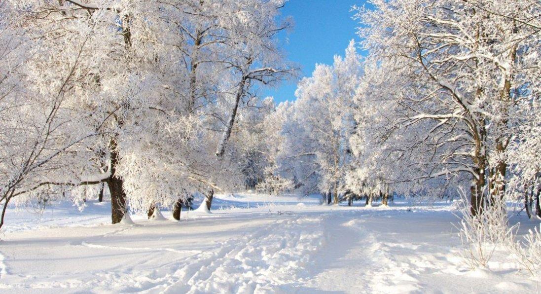 Де в Україні найкрасивіша зима: казкові пейзажі