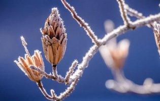7 лютого: чому сьогодні не можна важко працювати