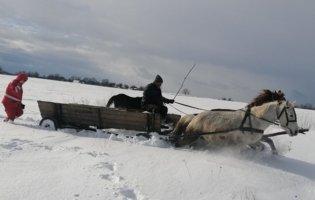 У Житомирської області пацієнтку везли до «швидкої» на конях
