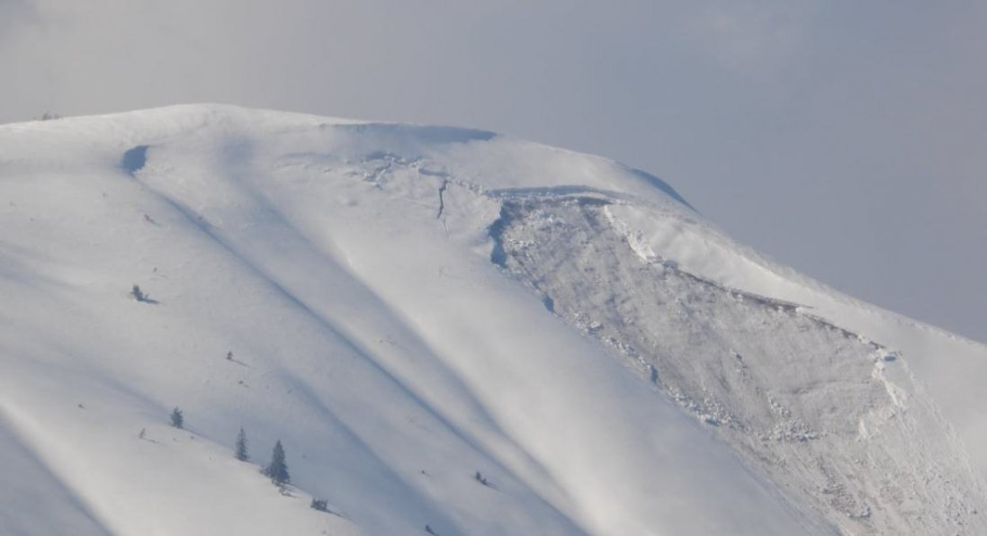 На Закарпатті зійшла снігова лавина