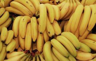 Банан може цвісти протягом декількох місяців