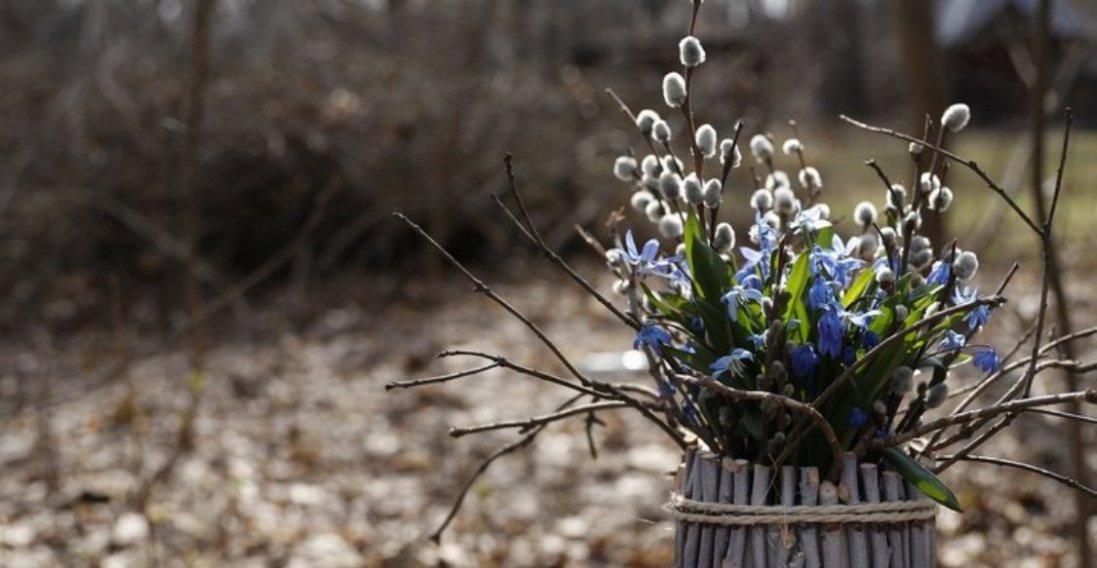 21 березня: чому сьогодні варто принести додому вербові гілочки