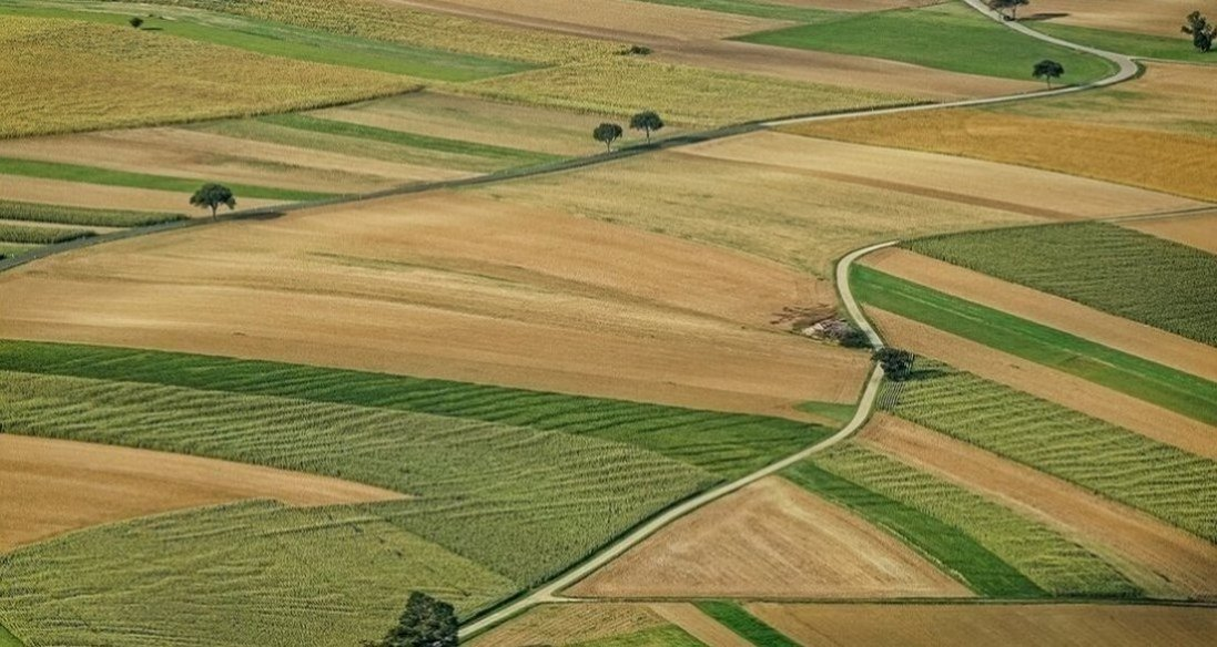 Держгеокадастр і далі «роздає» землю біля Світязю, попри звернення місцевої громади (документ)