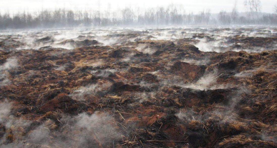 У селі на Волині щороку горить 400 га торф'яників: Луцька райрада шукає вирішення проблеми