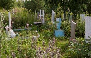 Як правильно прибирати на кладовищі після зими