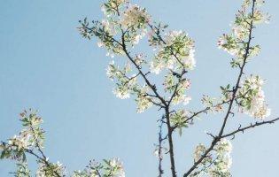 Що не можна робити 18 квітня: прикмети та забобони