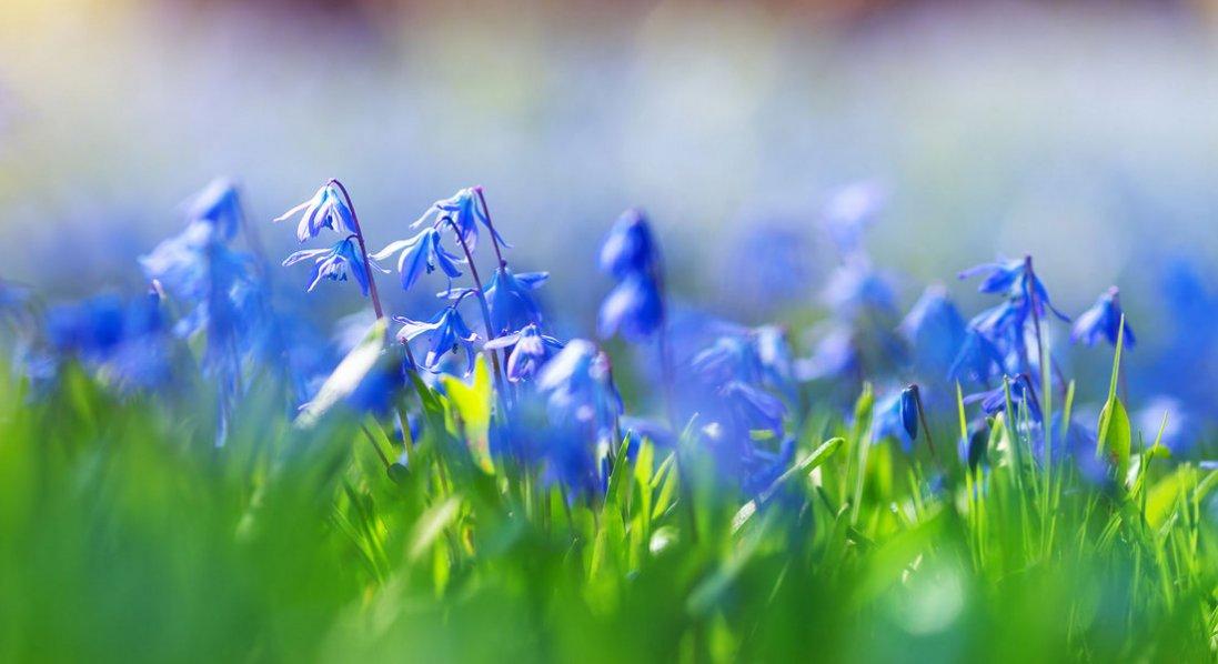 19 квітня: яке сьогодні свято та чого не можна робити