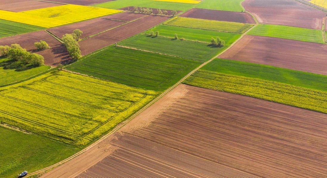 В українців можуть забрати право на отримання безкоштовної землі