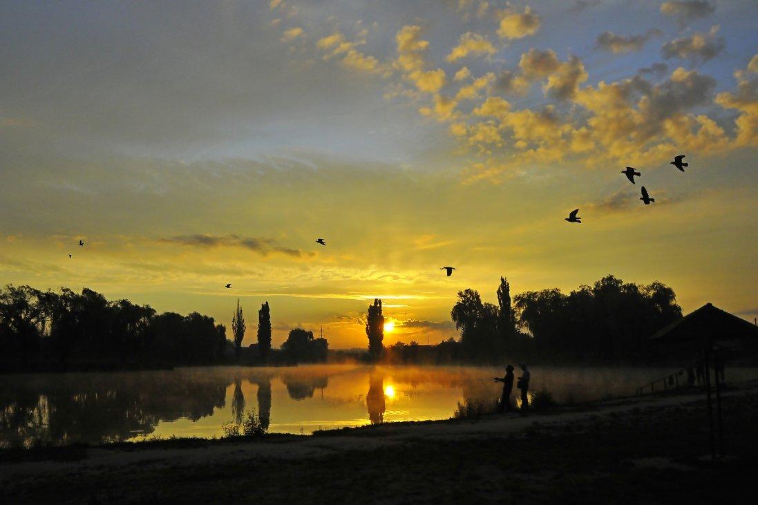 День Сонця на світлинах луцького фотографа
