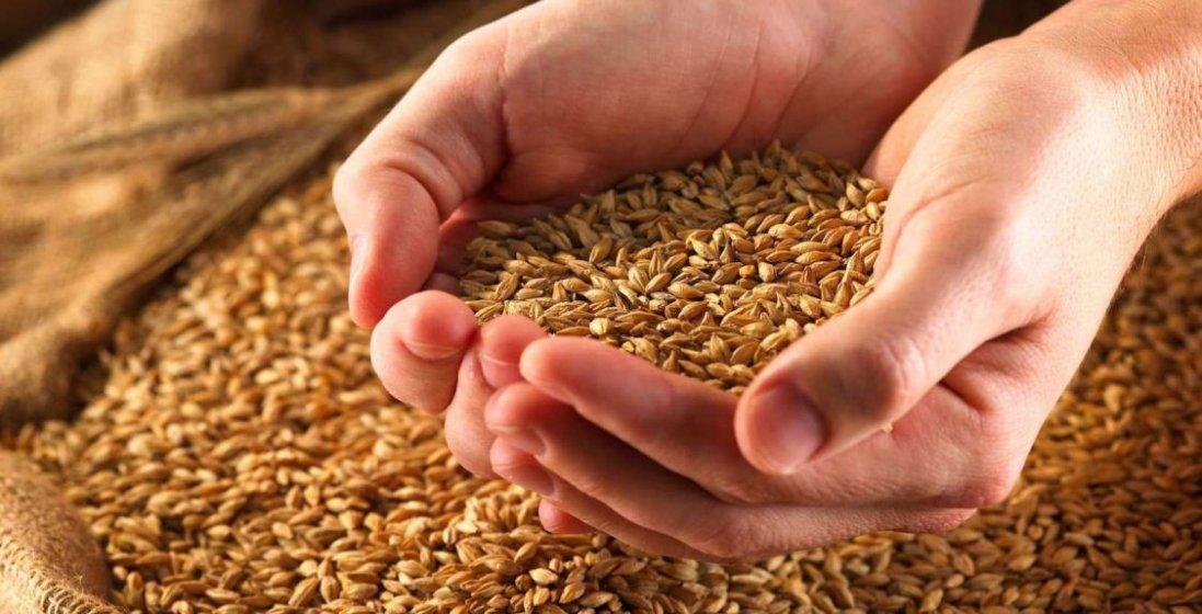 10 травня: чому сьогодні не можна їсти зерно
