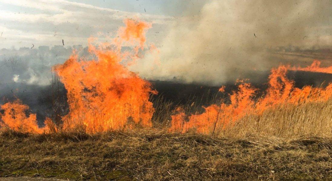 На Львівщині горів чоловік, який хотів спалити траву