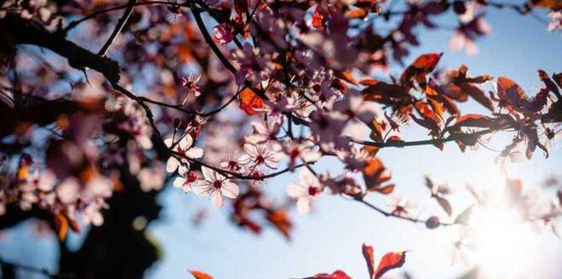 16 травня : чому сьогодні не можна нічого обіцяти