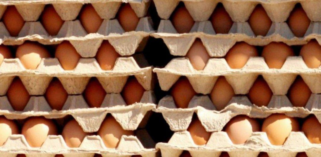 В Україні знизилась ціна на яйця