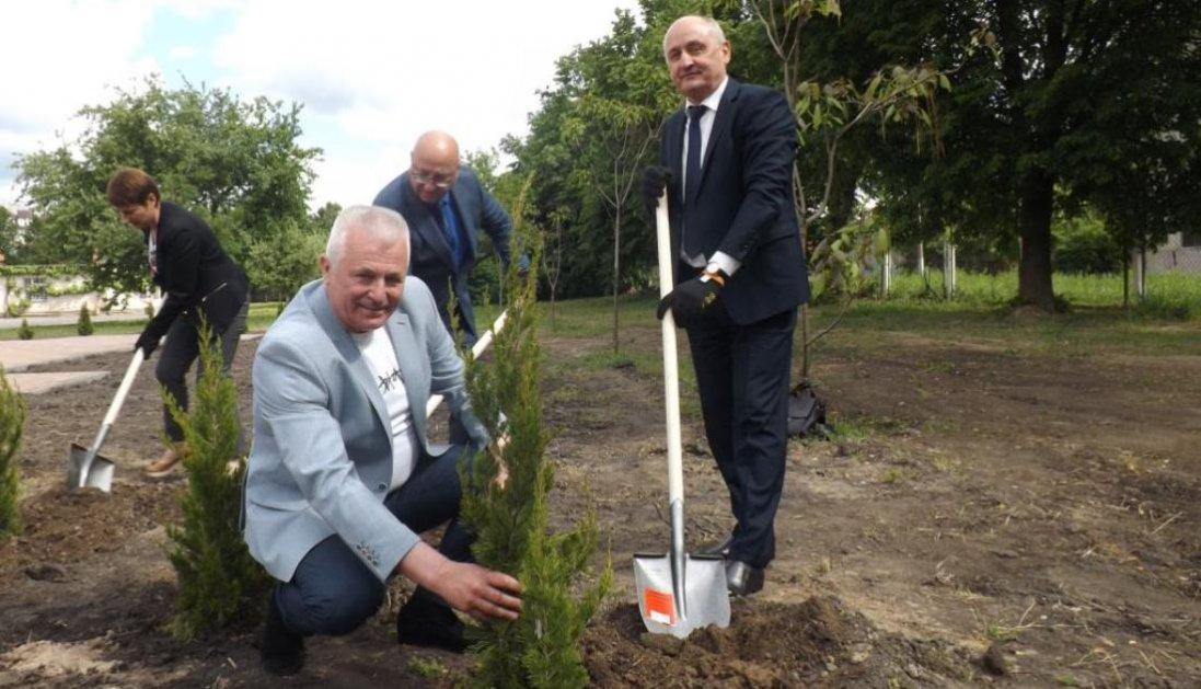 У Луцьку в Сквері майбутнього висадили дерева