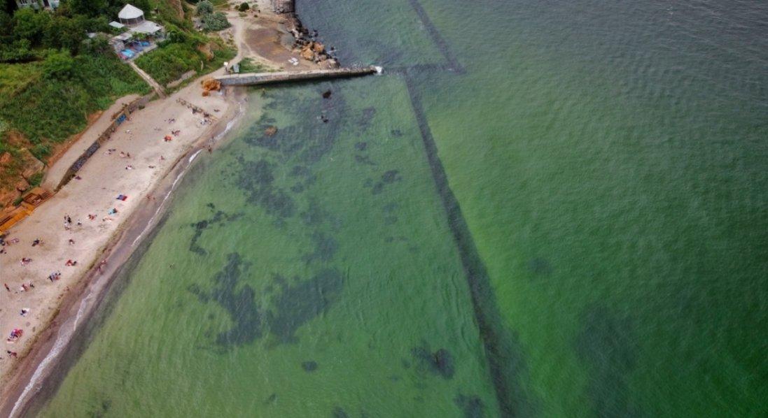 В Одесі «зацвіло» Чорне море