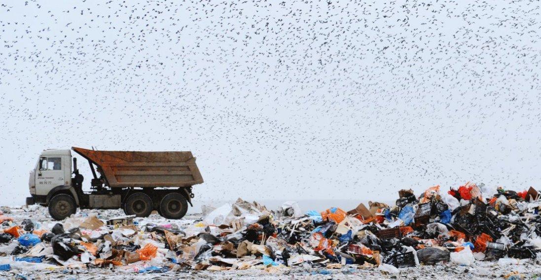 Біля Луцька планують розширити сміттєвий полігон