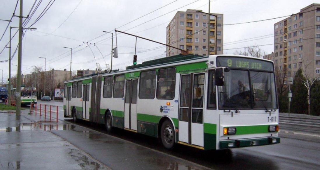 У Рівному інста-блогерка  роздяглася в тролейбусі