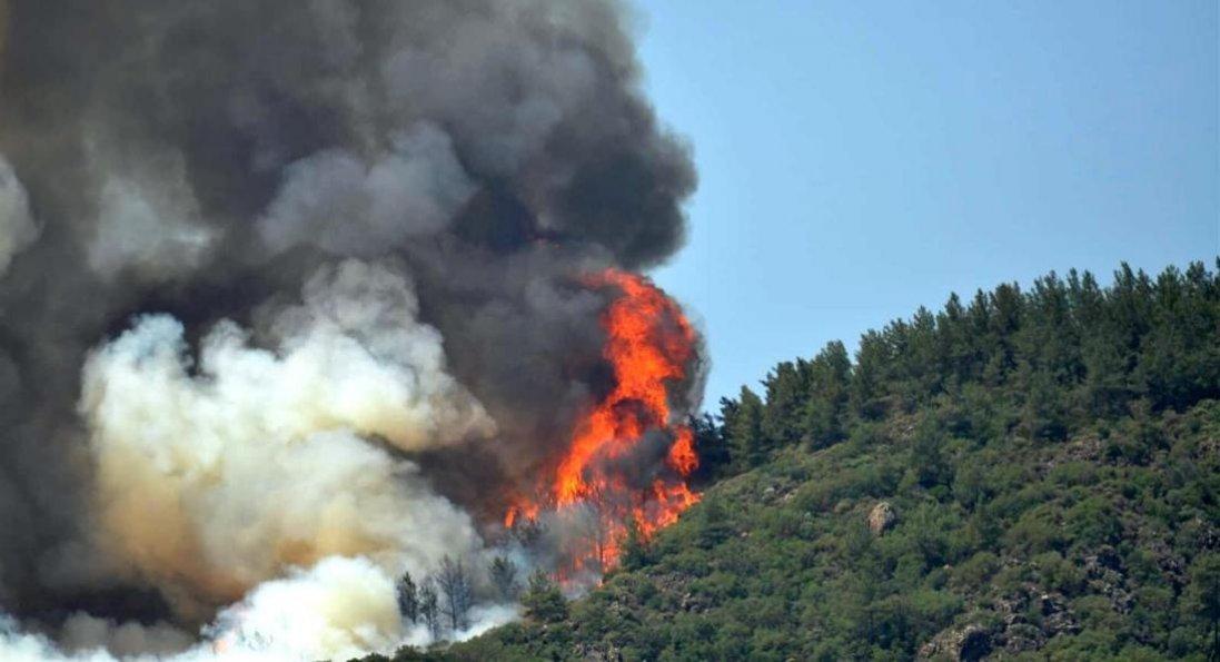 У Туреччині - лісові пожежі біля курортного міста: є загиблий