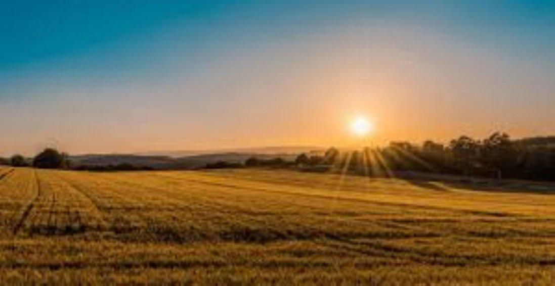 В Україні з 1 липня відкриють ринок землі