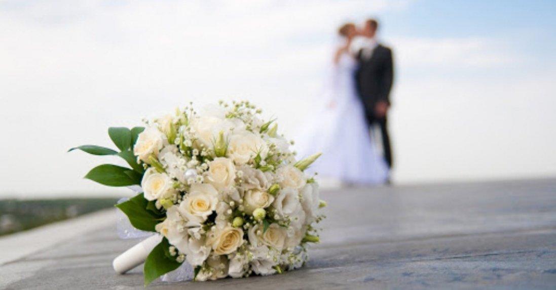 Як за хвилину визначити, коли у вас буде «пік весілля»