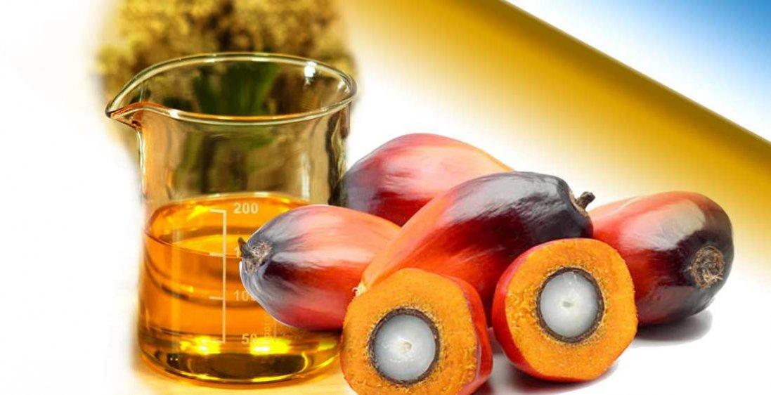 Як просто виявити у продуктах пальмову олію: поради дієтолога