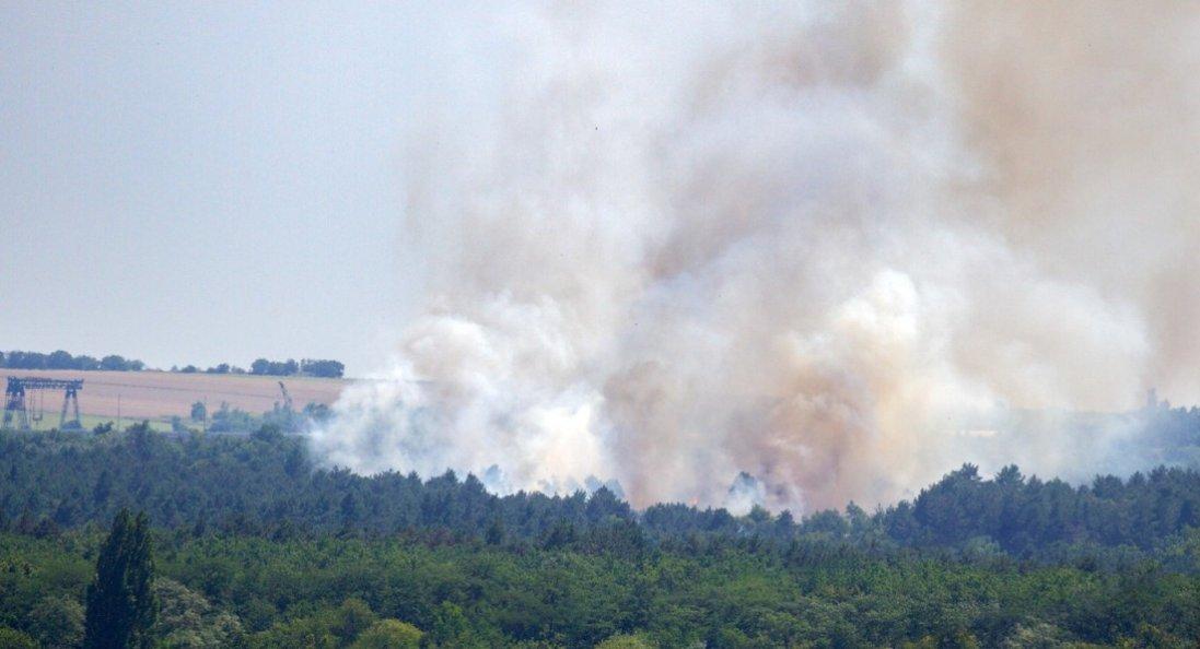 «Хортиця палає»: в Запоріжжі горів сосновий ліс